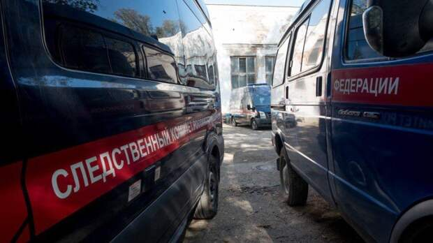 В СК раскрыли новые подробности драки в Ельце
