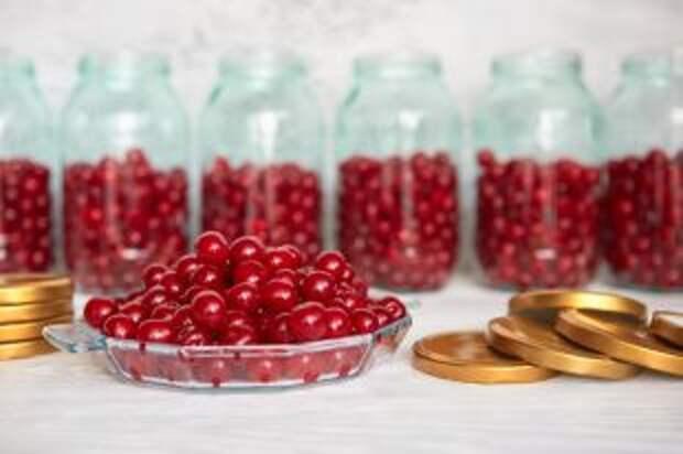 Витаминный запас на зиму. Идеи заготовок из ягод для начинающих хозяек