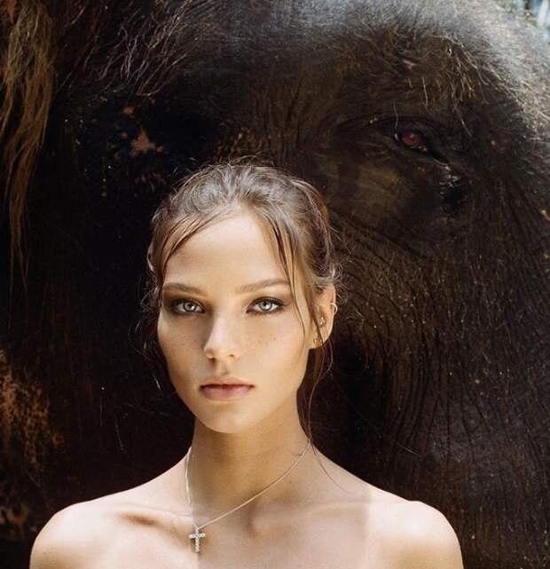 алеся кафельникова на фоне слона