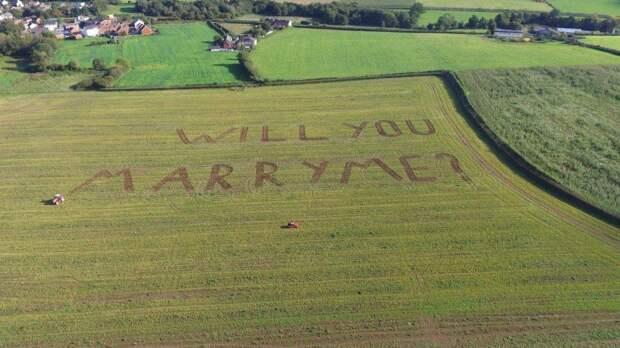 Британский романтик сделал предложение с помощью газонокосилки и воздушного шара