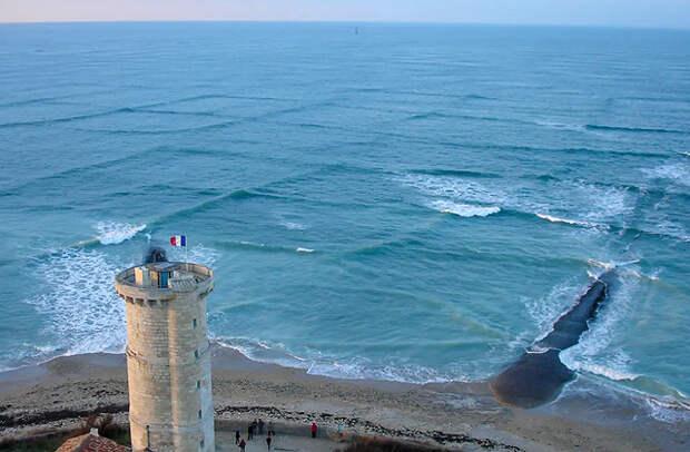 Внимание, опасность: море в «клеточку»