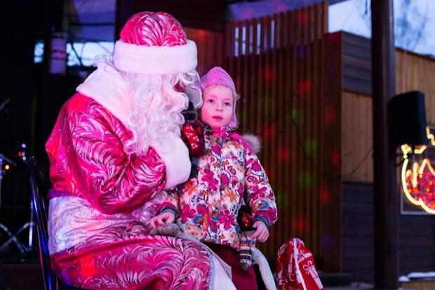 «Активные граждане» выберут программу новогодней ночи в Лианозовском парке