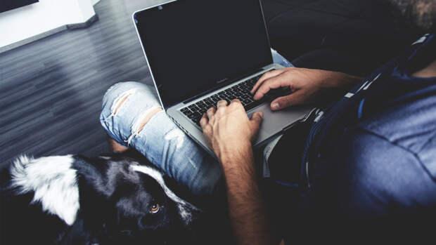 IT-эксперт Рябинин дал советы по улучшению работоспособности ноутбука