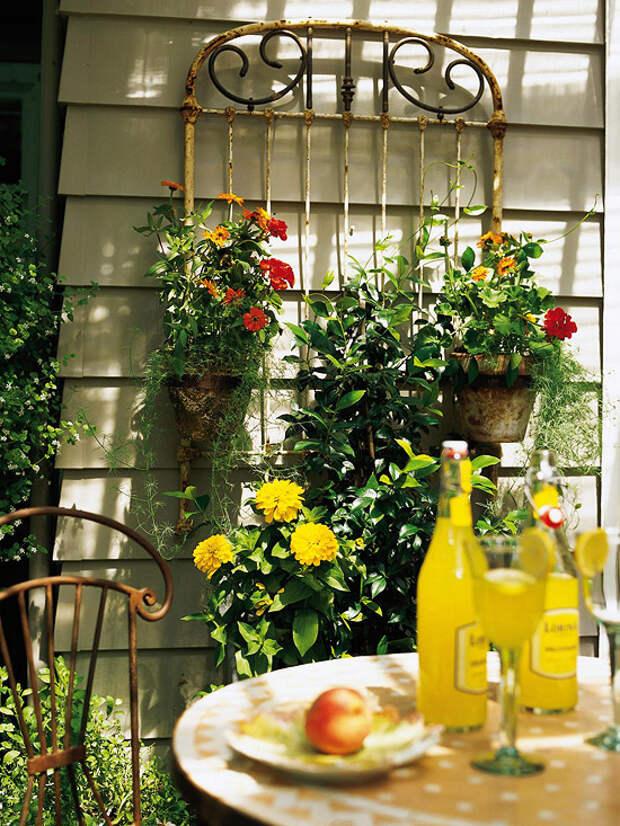 Пристенная шпалера - подборка идей оригинального декора