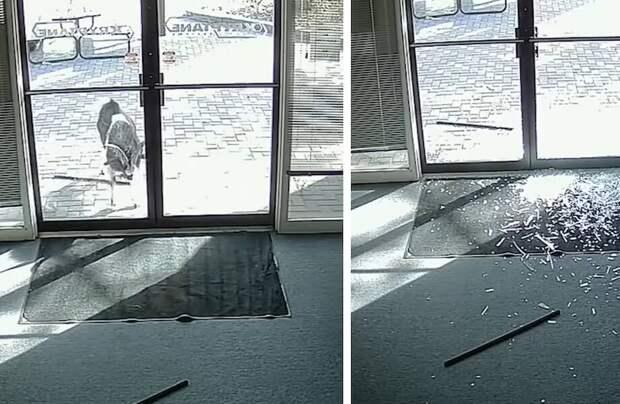 Видео: 25 случаев, когда стекло оказалось недостаточно прочным