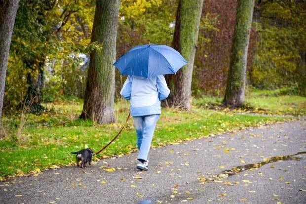 В четверг в Удмуртии ожидаются дожди