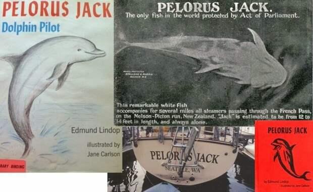Пелорус Джек Робин Уильямс, Чантек, батыр, видео, длиннопост, животные, подборка фактов, факты