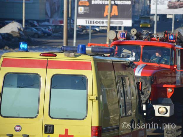 С начала года в Ижевске произошло более 50 ДТП с пешеходами