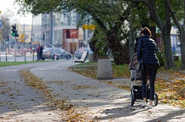В парке «Бригантины» у женщины была украдена коляска
