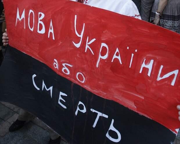 Украина ускоряет бег к социальной катастрофе