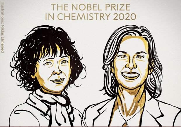 Названы лауреаты Нобелевской премии по медицине, химии, физике и литературе за 2020 год