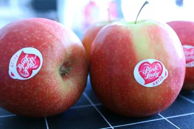 ГМО, агрохимия или полезный продукт: что означают цифры на фруктовых наклейках