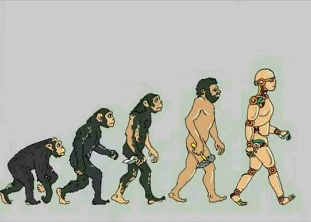 6 причин, почему эволюция не избавила нас от болезней