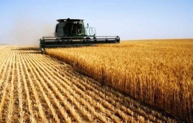 Геннадий Новосельцев поздравил работников сельского хозяйства