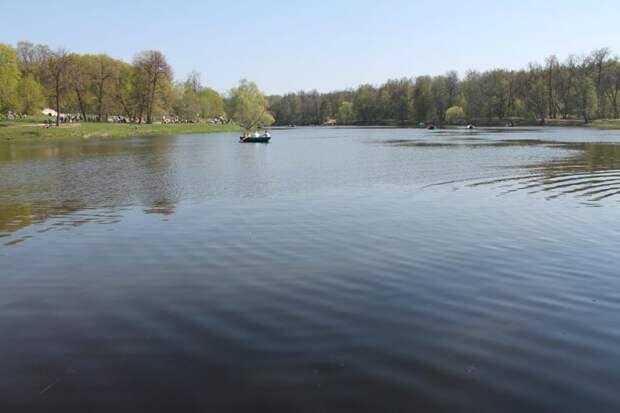 Дети до 18 лет могут кататься в лодке только в сопровождении взрослых/ГПБУ «Мосприрода»