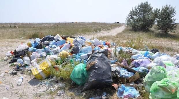 Сортировка мусора в РФ может обойтись бюджету в 1,1 млрд рублей в 2021 году