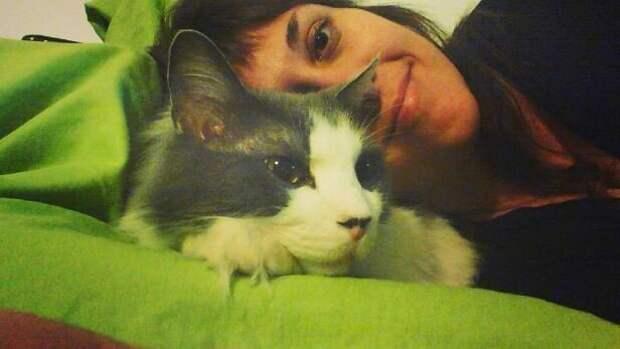 11. Используют кота как подушку, но не опираясь по-настоящему, чтобы его не придавить домашний питомец, животные, кот, кошка, привычки, прикол, юмор