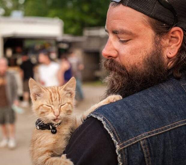 Байкер спас раненого котенка и продолжил свой путь, заботясь о нем.)