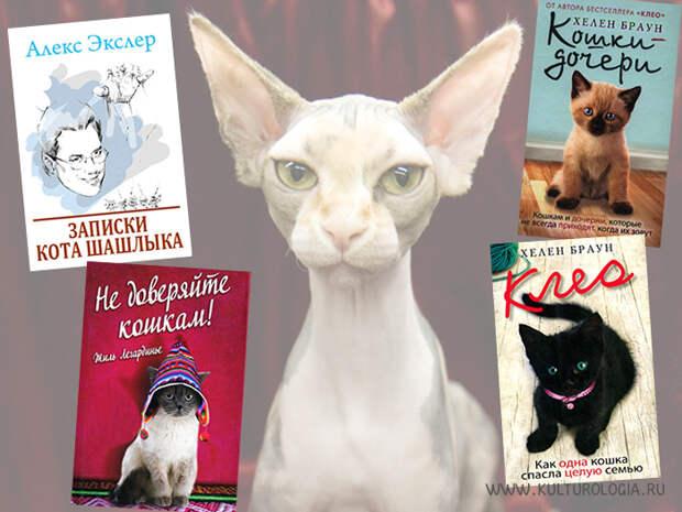 10 лучших книг, главными героями в которых являются кошки.