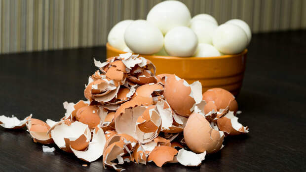 Скорлупу яиц не выбрасываем, а измельчаем и посыпаем на грядки. Овощи будут расти быстрее