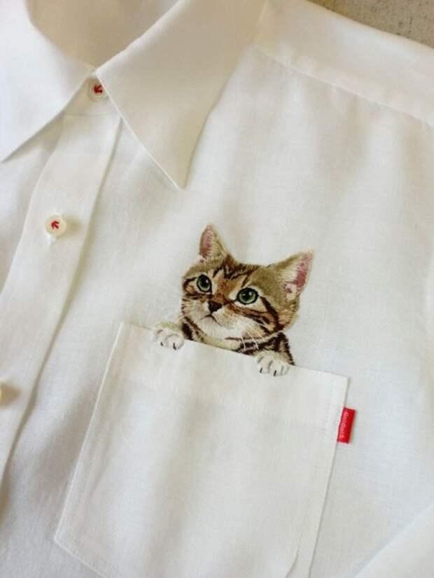 Блузки с котами (трафик)