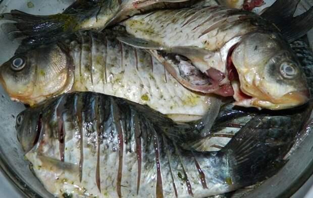 Рыба пахнет тиной не беда, расскажем, что делать
