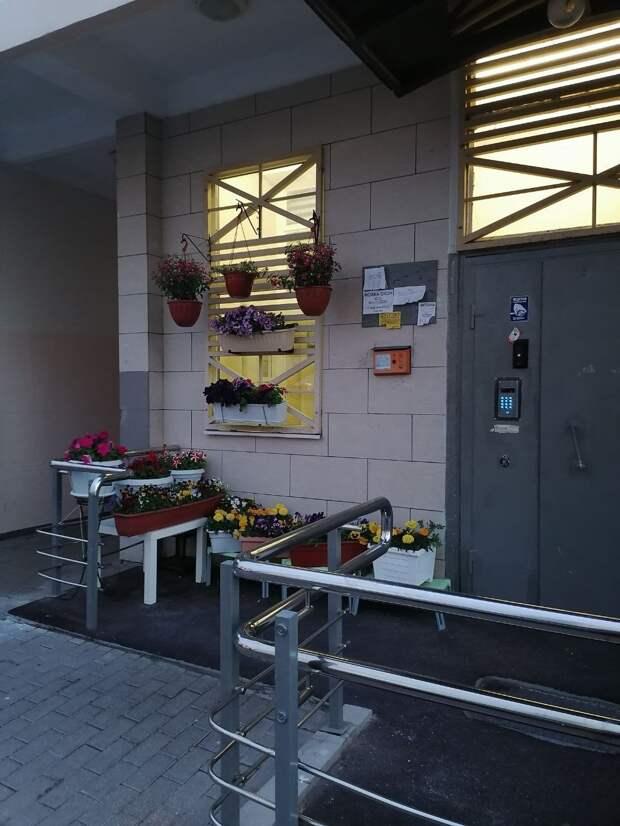 Фото дня: цветочный уголок на Большой Марфинской