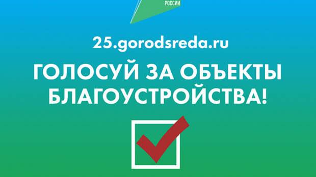 Почти 64 тысячи приморцев проголосовали заулучшение общественных пространств