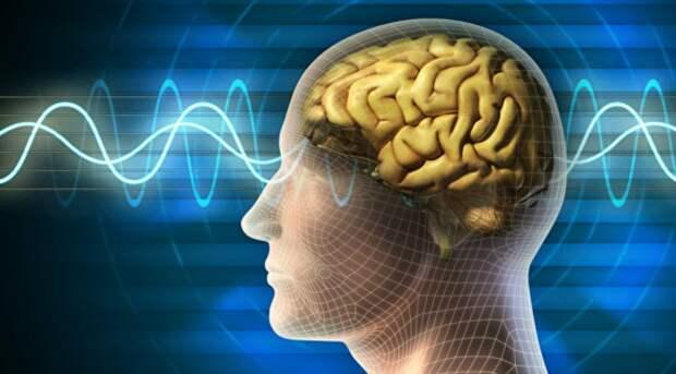 Человеческий мозг способен самостоятельно предсказывать будущее