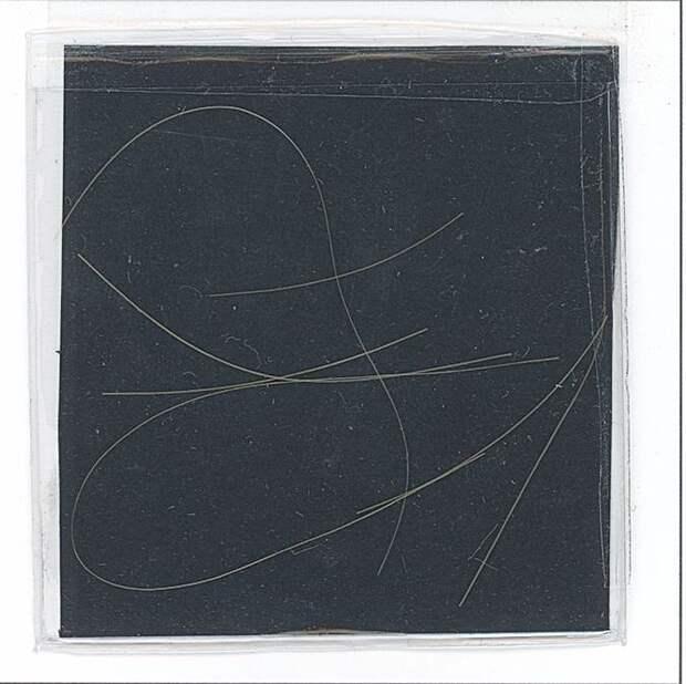 Прядь волос Курта Кобейна продадут на аукционе