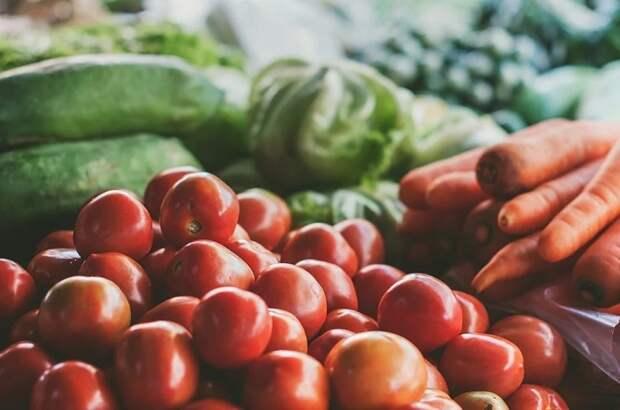 Кубань аграрная: овощей хватит на всех