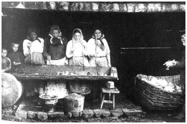 Заготовка капусты на зиму. Южный Урал. 1914 Крестьяне, россия, старые фото