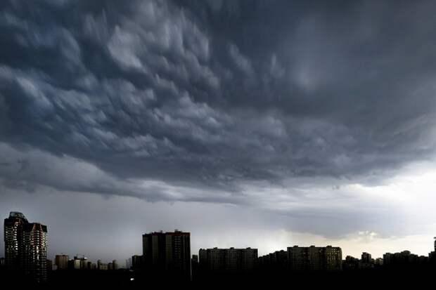 Дожди, но не спасительные: в Волгограде ожидается мощный природный катаклизм с градом и ветром