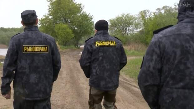 «Неделя без сетей»:  в Приморье  стартовала всероссийская экологическая акция