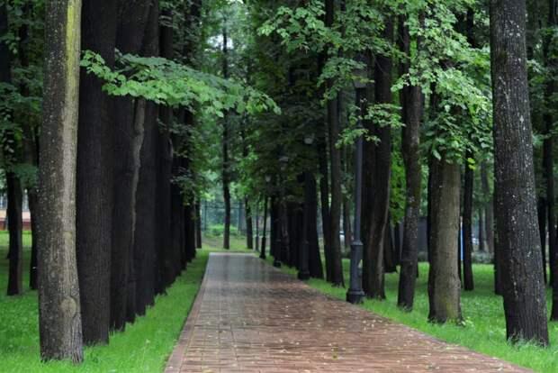 В Бабушкинском парке ввели ограничения для посетителей