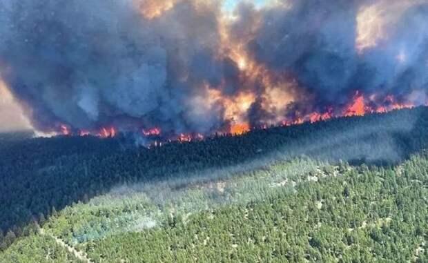 Якутским медикам предписали скинуться на тушение пожаров