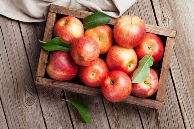 Как яблоки возвращают здоровье и красоту