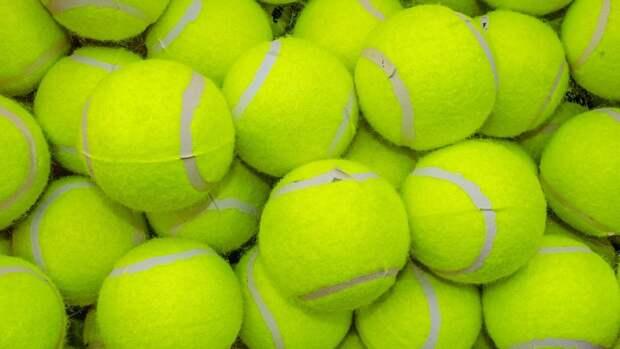 Мать Андрея Рублева ответила на обвинения теннисистки в избиении