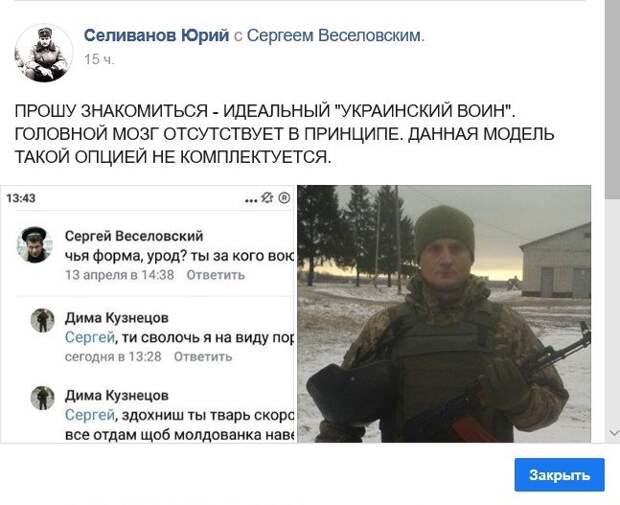 Юрий Селиванов: Угрызение несъедобного кактуса