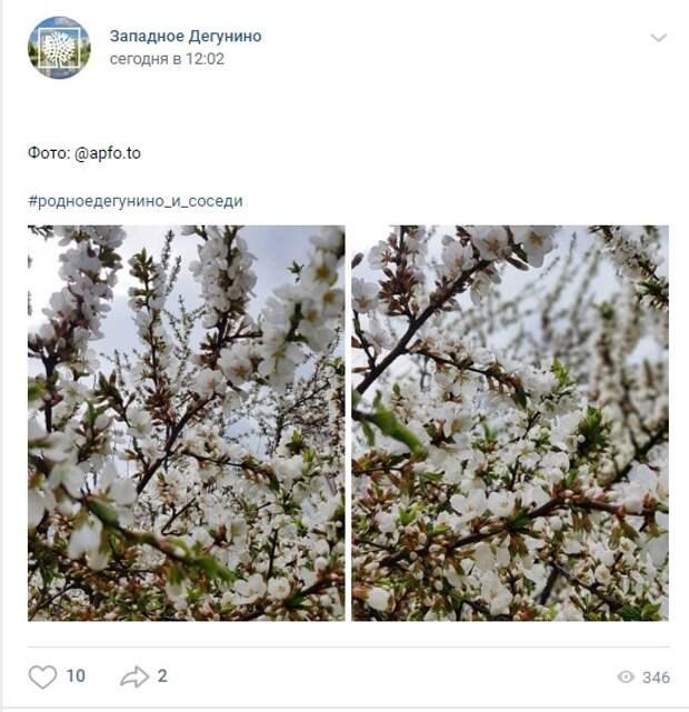 Фото дня: весна на Ангарских
