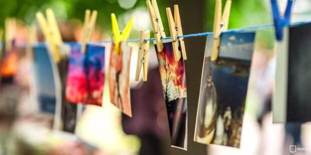 В сквере по Олонецкому проезду все лето будут работать бесплатные фотовыставки