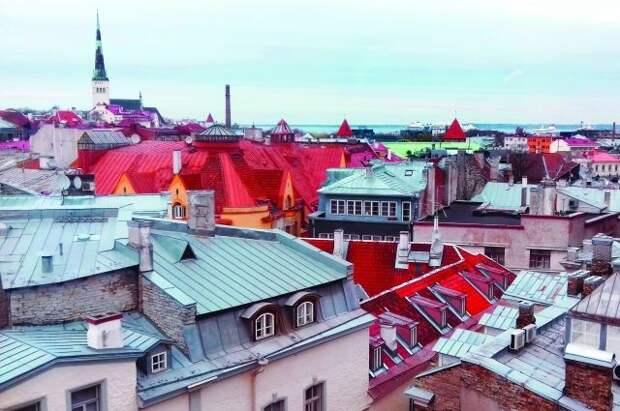 Эстония прекратит финансировать образование на русском языке с 2035 года