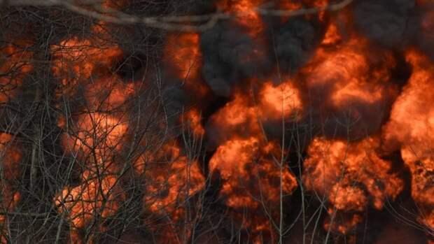 В Пермском крае юные блогерши сожгли ферму ради эффектного видео для TikTok