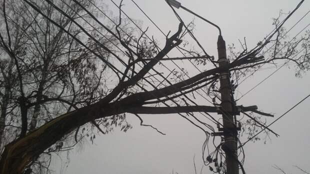 Ветер оставил без электричества уже более 50 тыс. нижегородцев
