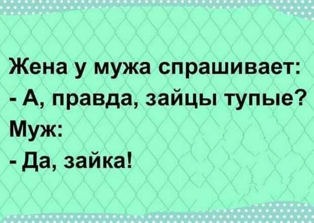 Разговаривают двое влюбленных: - Милый, за что ты меня любишь?...