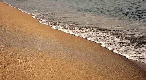 Американец обнаружил на пляже обернутый в фольгу мозг - Cursorinfo: главные новости Израиля