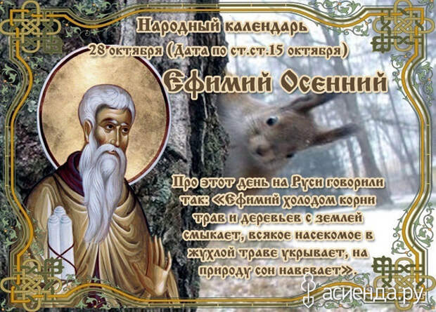 Народный календарь. Дневник погоды 28 октября 2021 года