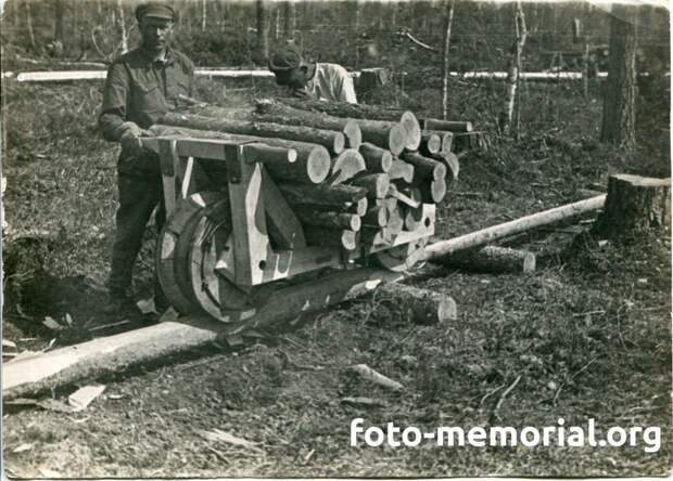 Заключенные на лесоразработках