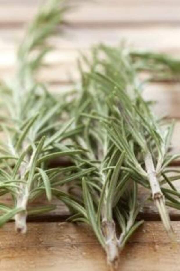 Мощная трава для мозгового кровообращения
