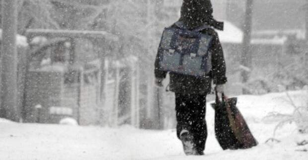Школьникам Ленобласти разрешили не ходить в школу из-за морозов